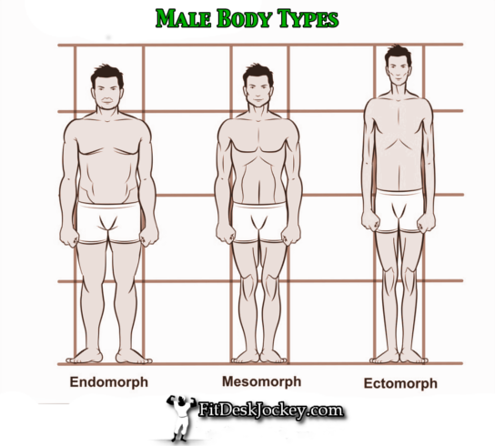 Naked male body types nude